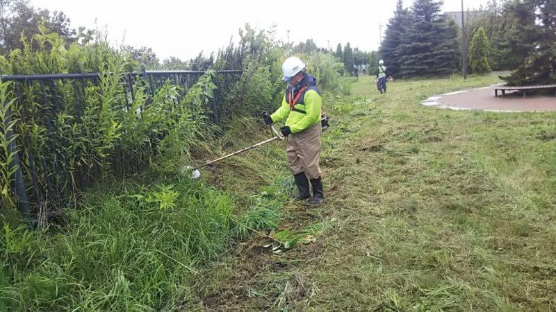 草刈りボランティアに参加/美唄建設業協会