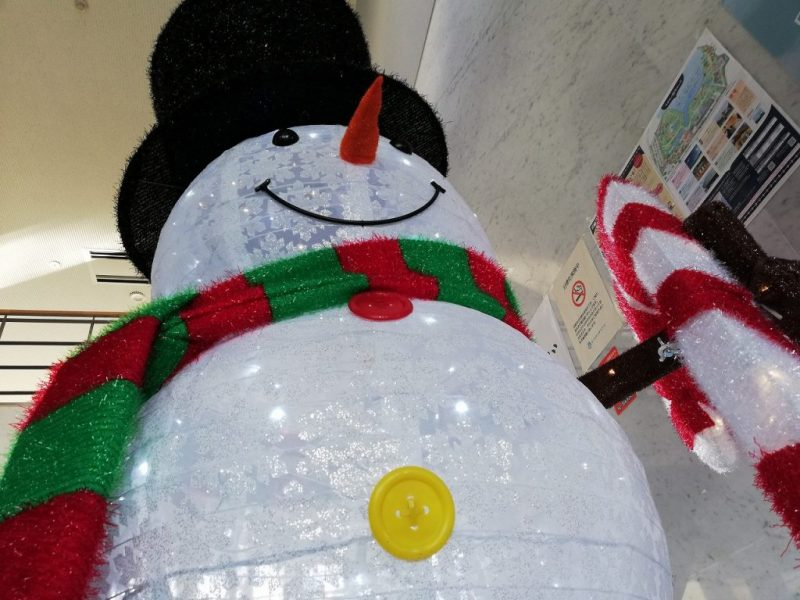 今年も雪の仲間がきてくれました!